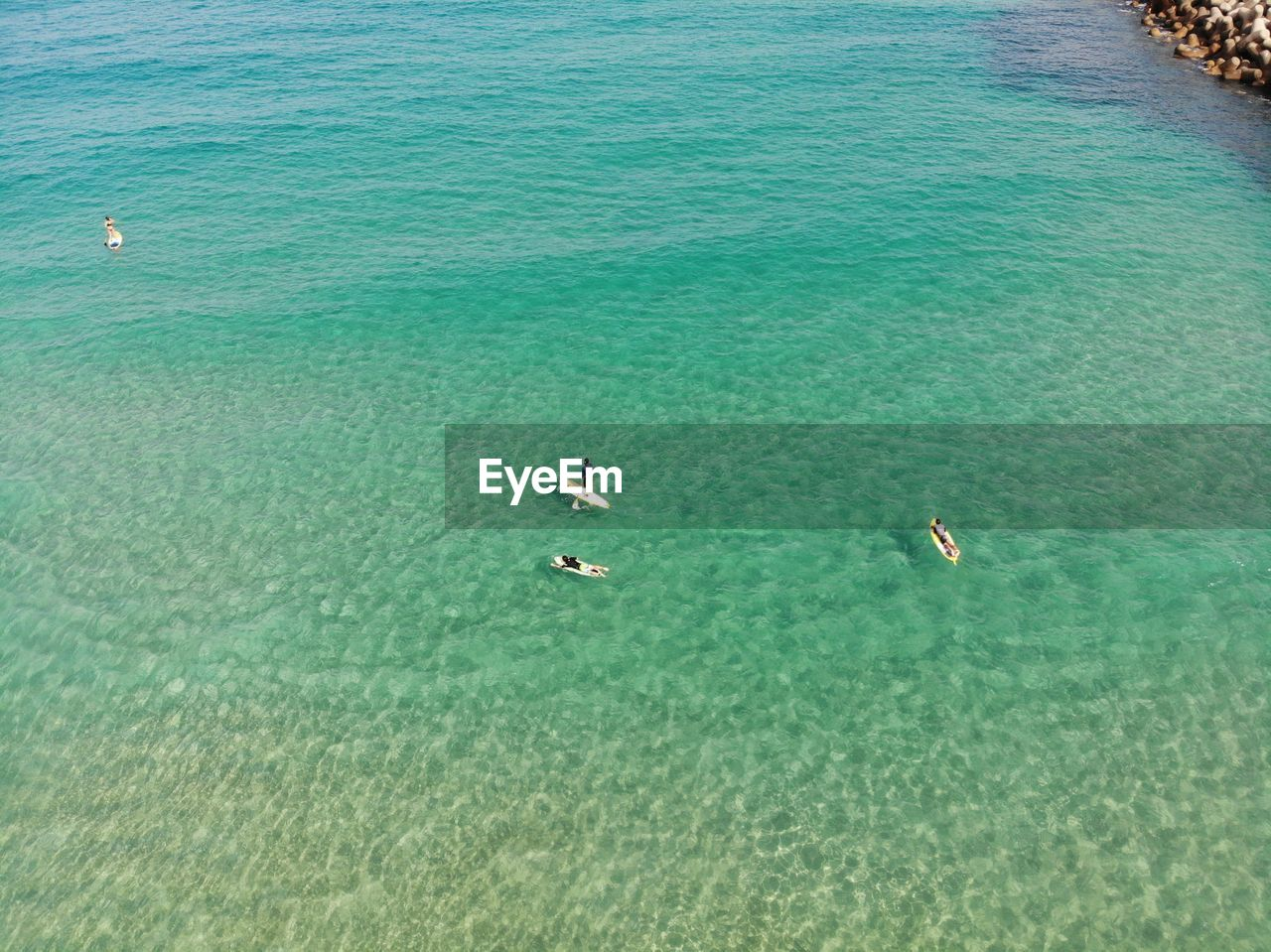 water, sea, waterfront, beauty in nature, scenics - nature, high angle view, day, nature, turquoise colored, tranquility, swimming, tranquil scene, blue, outdoors, nautical vessel, animal, animals in the wild, vertebrate, animal themes