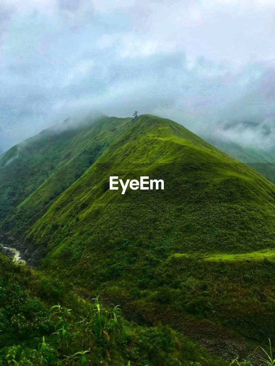 scenics - nature, beauty in nature, tranquility, tranquil scene, green color, landscape, environment, non-urban scene, mountain, day, cloud - sky, plant, sky, nature, no people, outdoors, land, idyllic, fog, mountain peak