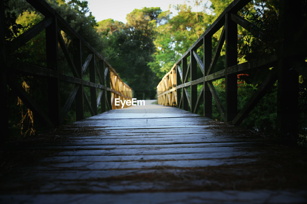 direction, the way forward, tree, bridge, connection, architecture, nature, bridge - man made structure, plant, forest, footbridge, diminishing perspective, day, no people, built structure, footpath, railing, tranquility, wood - material, outdoors, wood, long, surface level