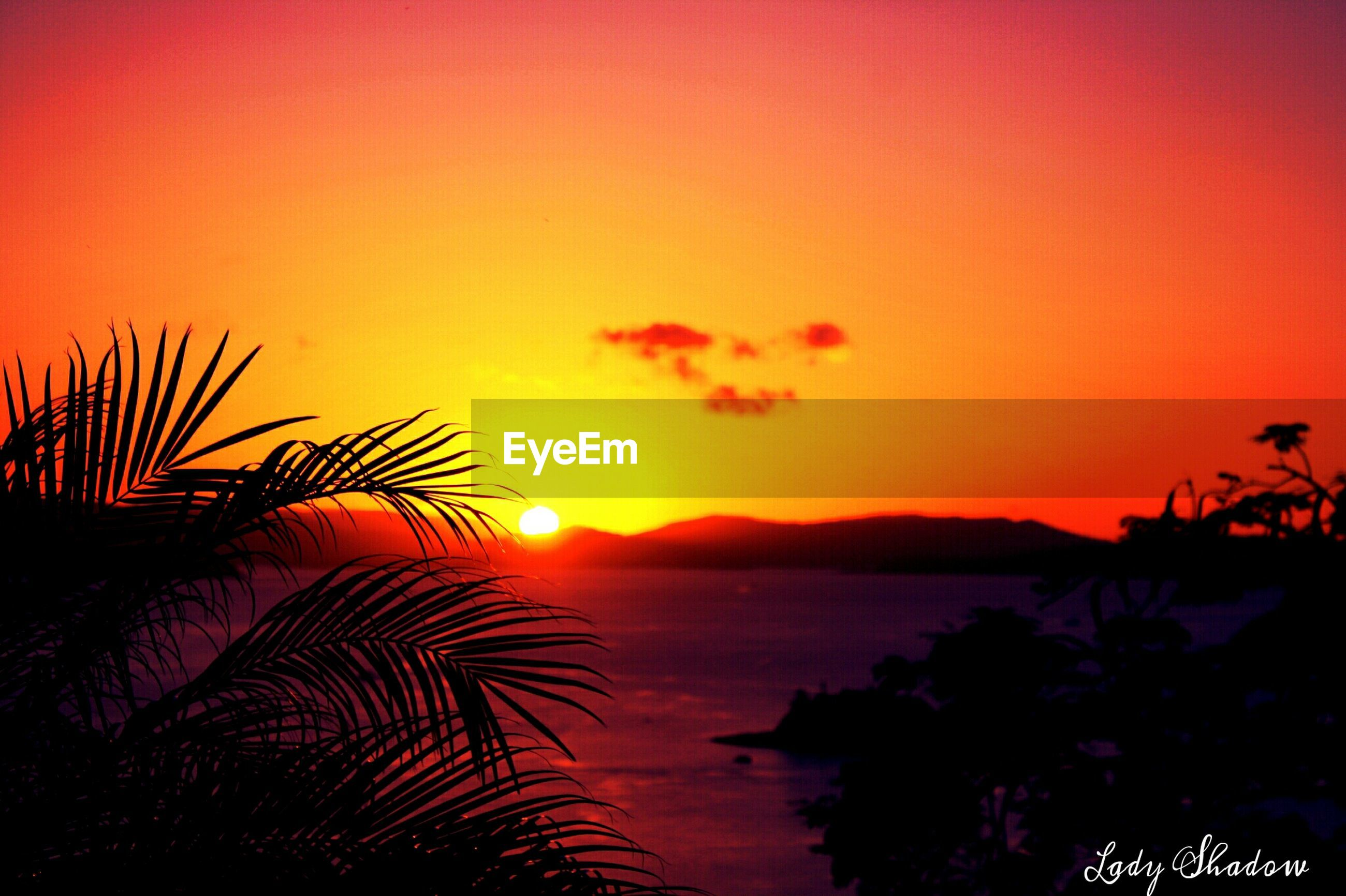 sunset, silhouette, tranquil scene, scenics, tranquility, beauty in nature, orange color, mountain, idyllic, sun, nature, water, sky, mountain range, majestic, copy space, lake, outdoors, tree, clear sky