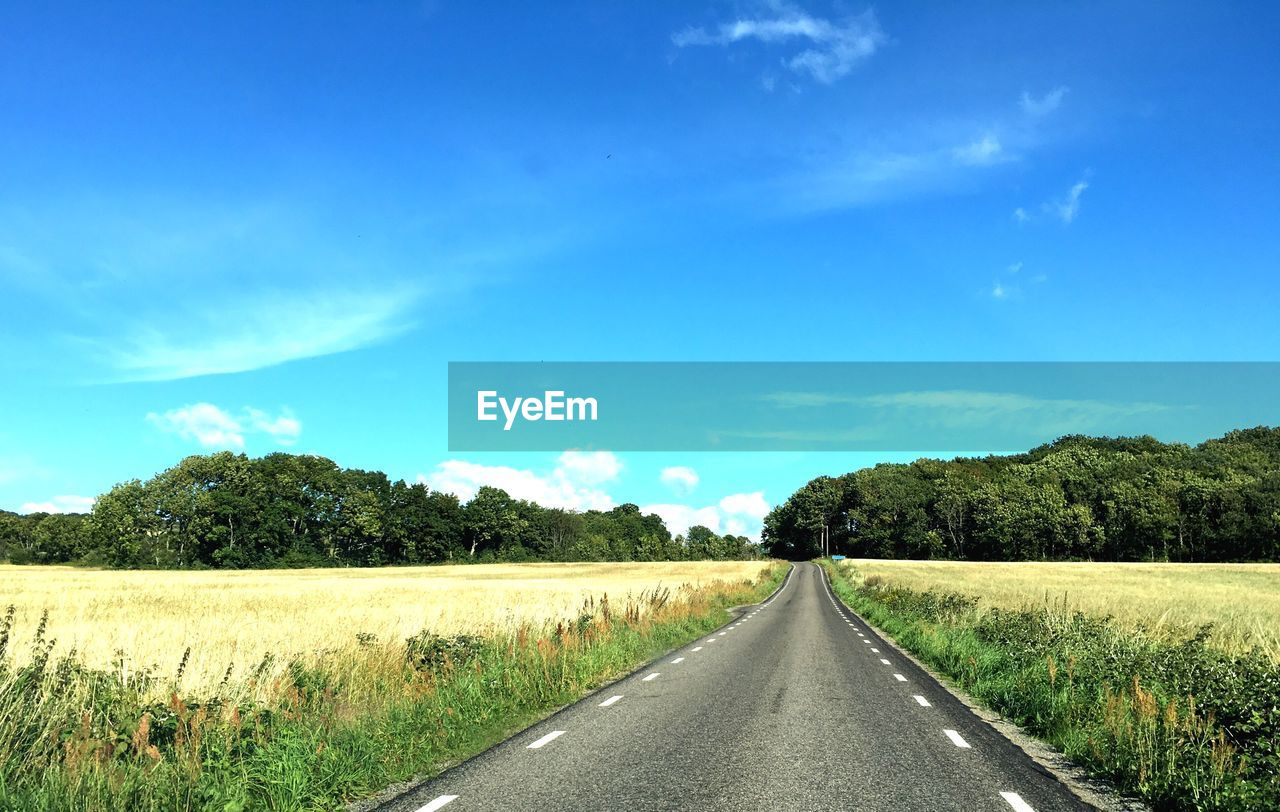 sky, road, the way forward, direction, plant, transportation, landscape, tree, tranquil scene, environment, nature, tranquility, land, beauty in nature, field, cloud - sky, diminishing perspective, blue, day, non-urban scene, no people, outdoors, long