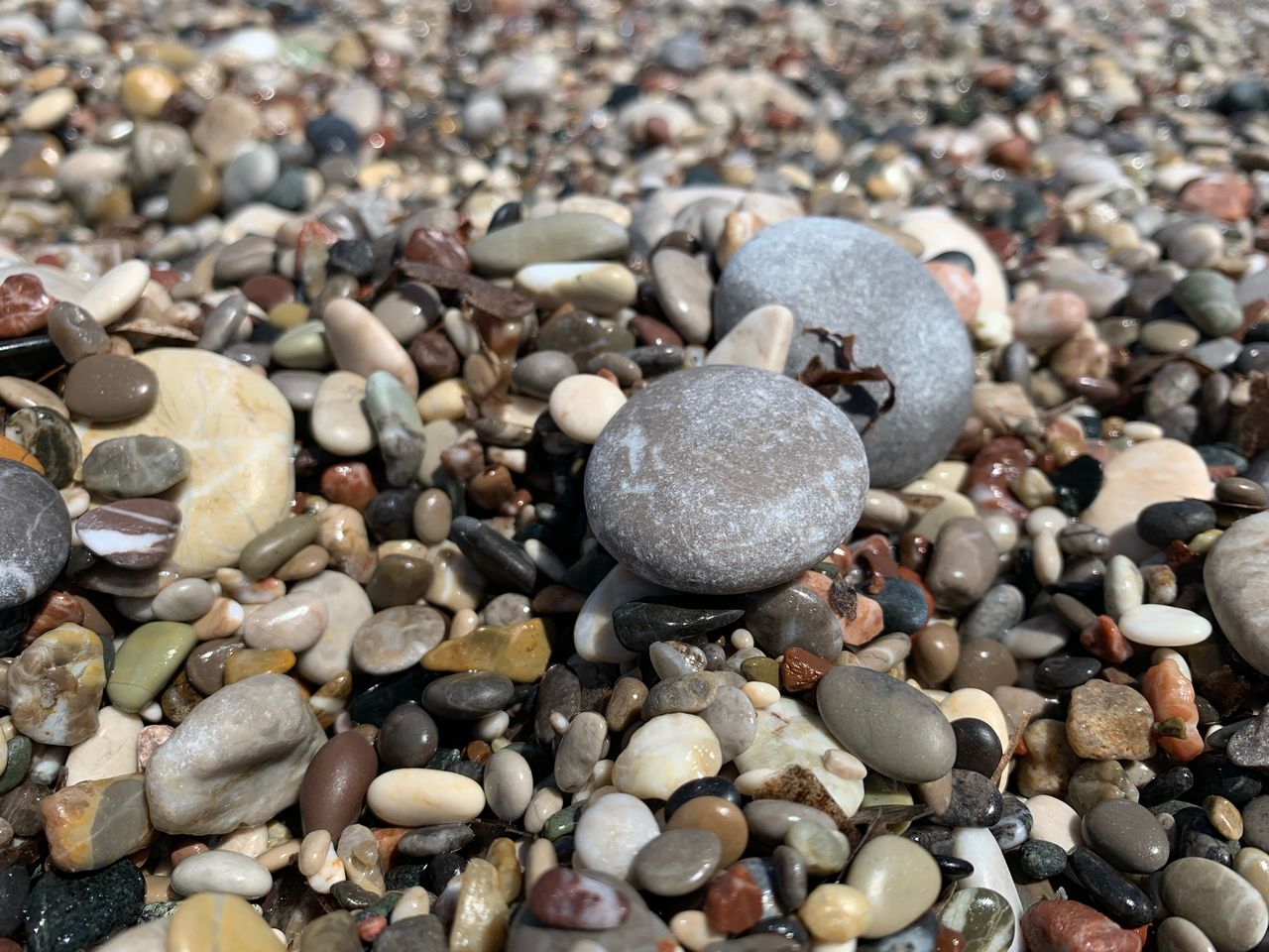 pebble, stone, stone - object, solid, no people, rock, land, abundance, full frame, nature, close-up, beach, high angle view, variation, day, large group of objects, choice, backgrounds, shell, rock - object, gravel, precious gem