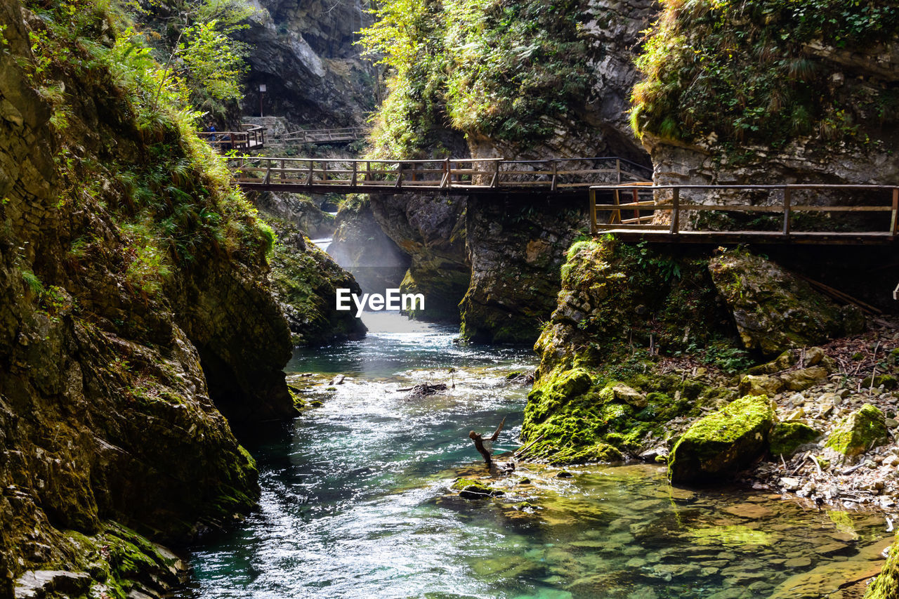 water, rock, motion, bridge, rock - object, scenics - nature, forest, solid, tree, flowing water, connection, nature, waterfall, river, bridge - man made structure, beauty in nature, day, no people, built structure, flowing, outdoors, power in nature