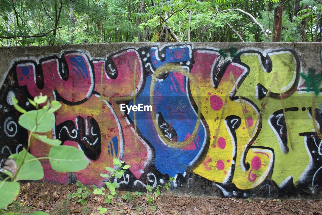 graffiti, creativity, art and craft, street art, multi colored, day, outdoors, tree, no people, close-up