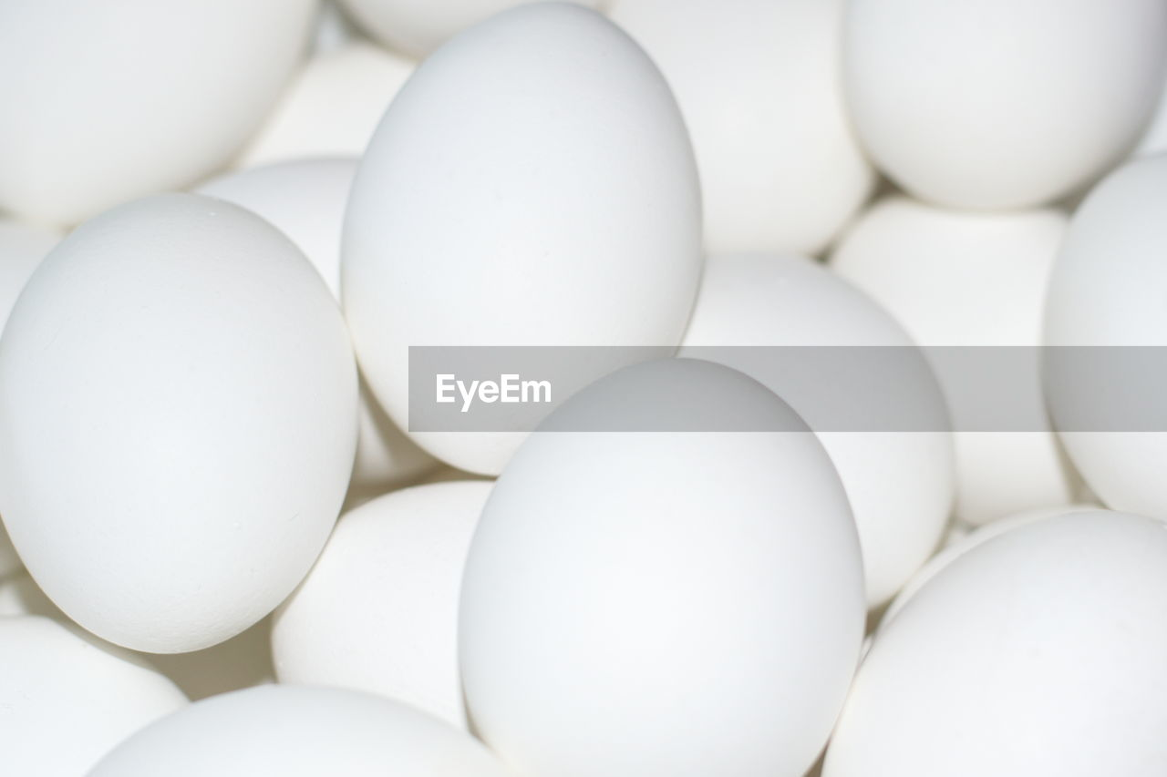 egg, white color, full frame, no people, wellbeing, healthy eating, food, large group of objects, backgrounds, close-up, freshness, food and drink, indoors, still life, vulnerability, fragility, high angle view, raw food, abundance, group of objects