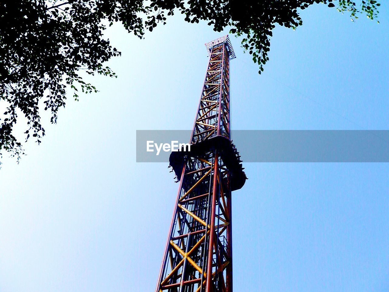 low angle view, tall - high, tree, architecture, built structure, tower, day, clear sky, blue, outdoors, no people, sky, nature