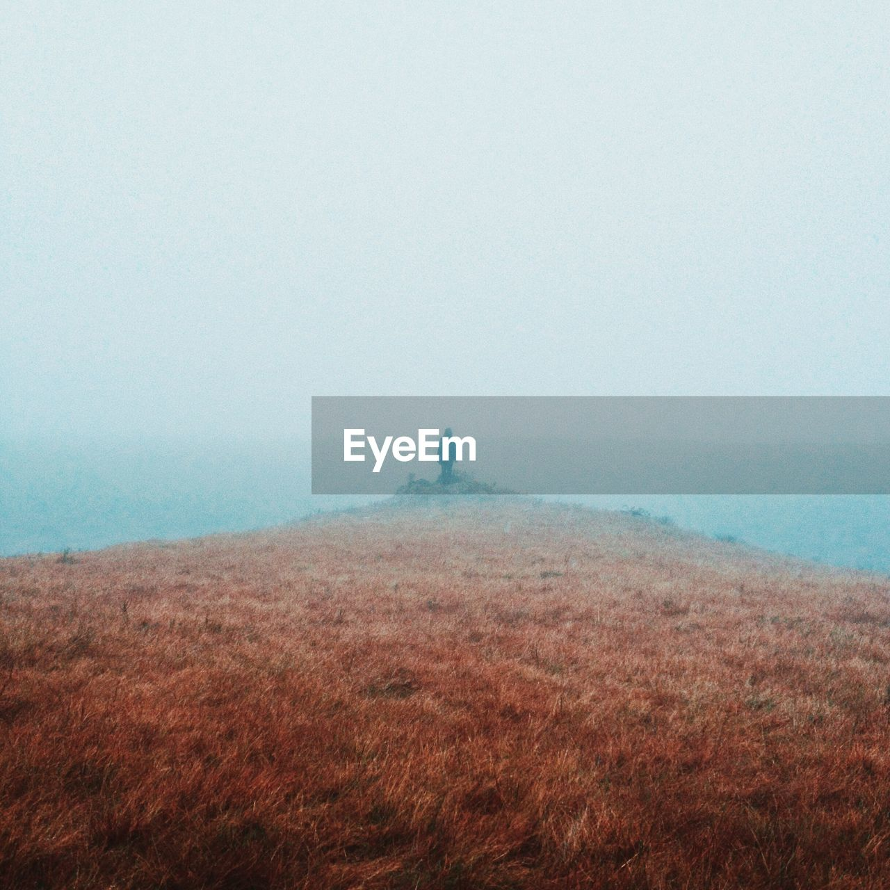 fog, nature, scenics, landscape, tranquility, tranquil scene, day, foggy, beauty in nature, outdoors, idyllic, field, sea, horizon over water, sky, no people