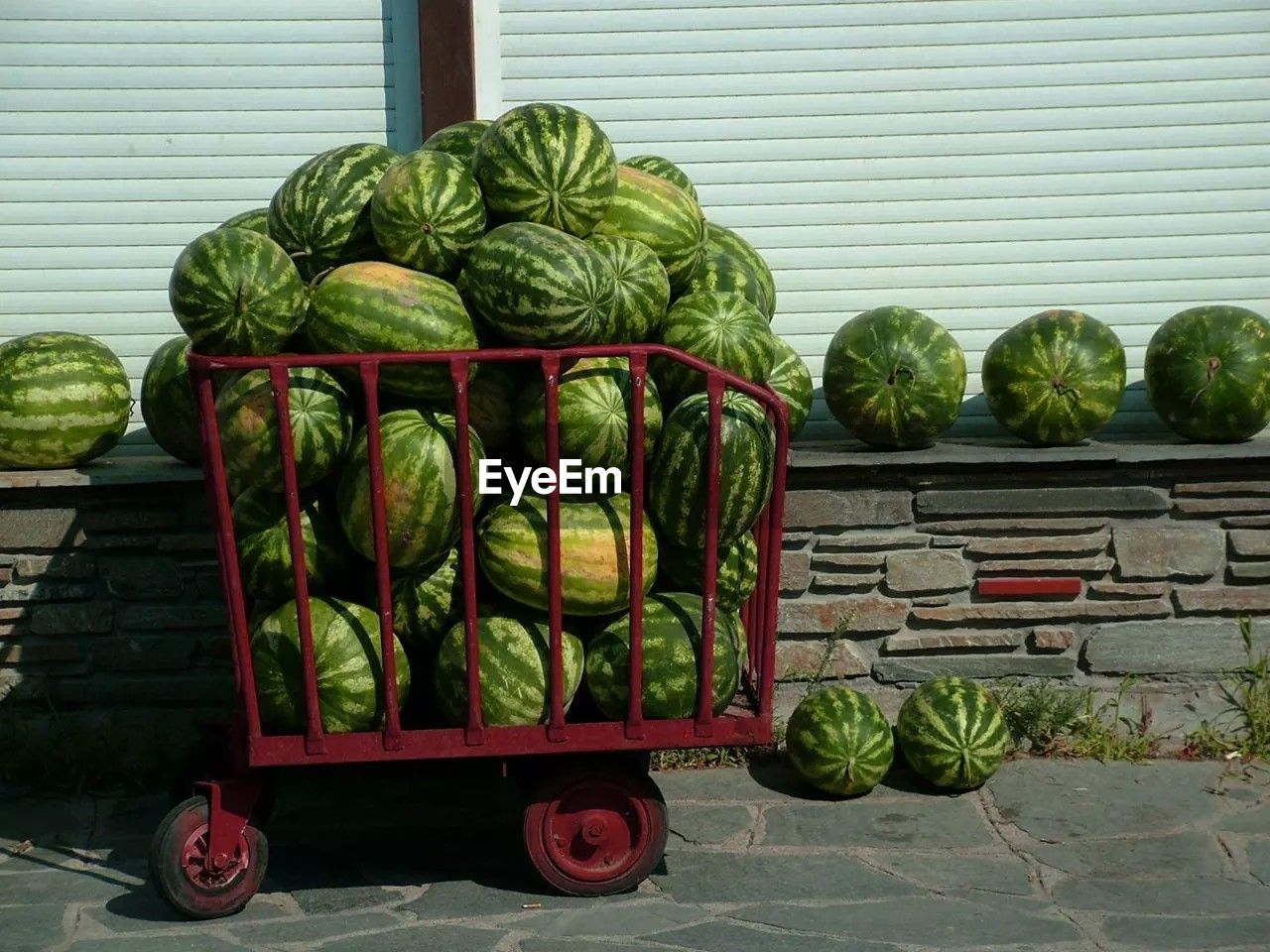Cart Of Watermelons For Sale