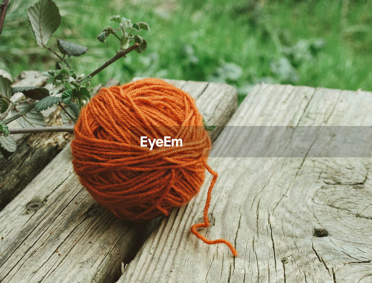 High angle view of orange wool ball on wooden table