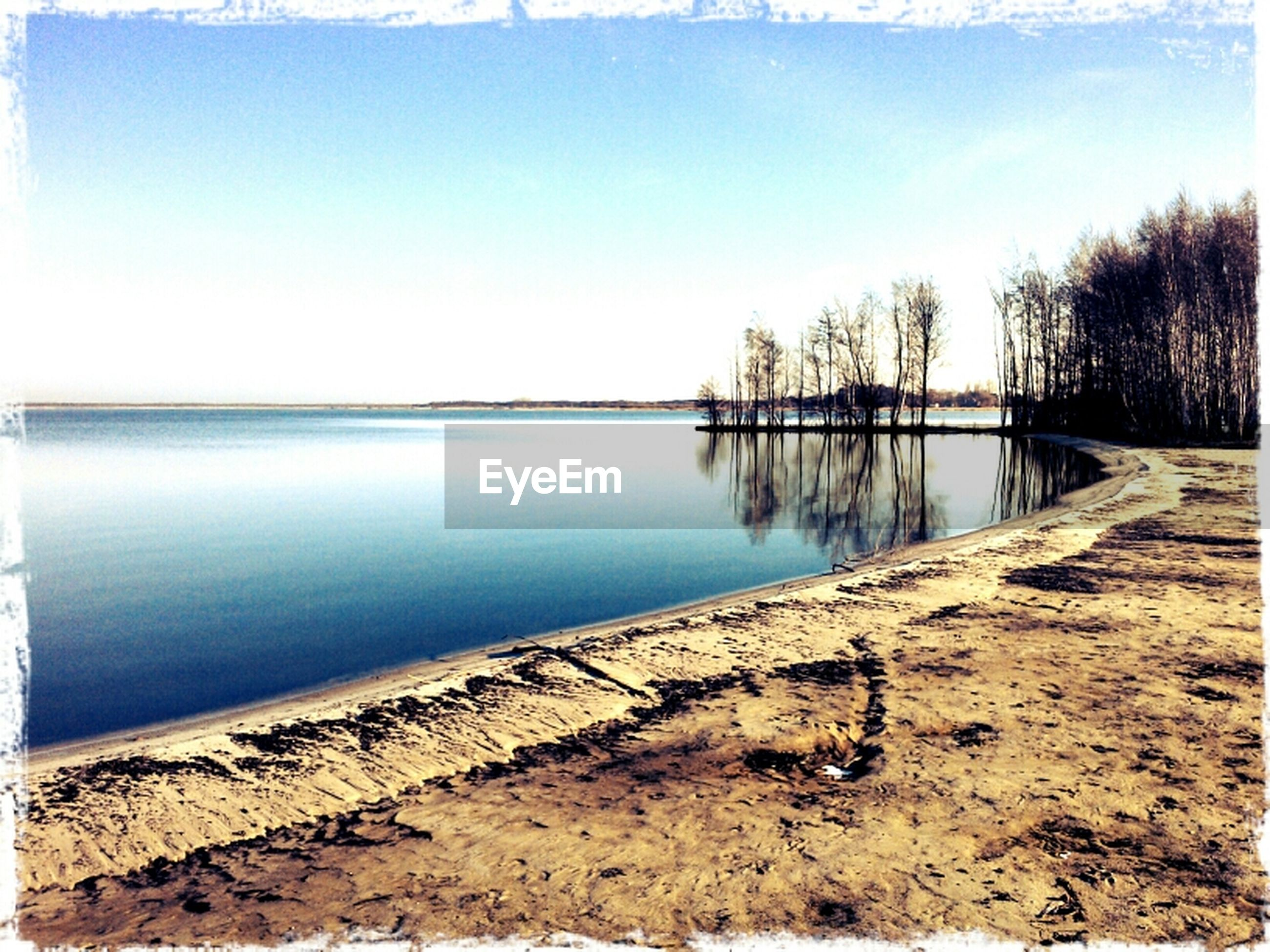 water, tranquility, tranquil scene, transfer print, scenics, sky, tree, auto post production filter, beauty in nature, nature, clear sky, lake, beach, reflection, blue, shore, sea, sunlight, day, idyllic