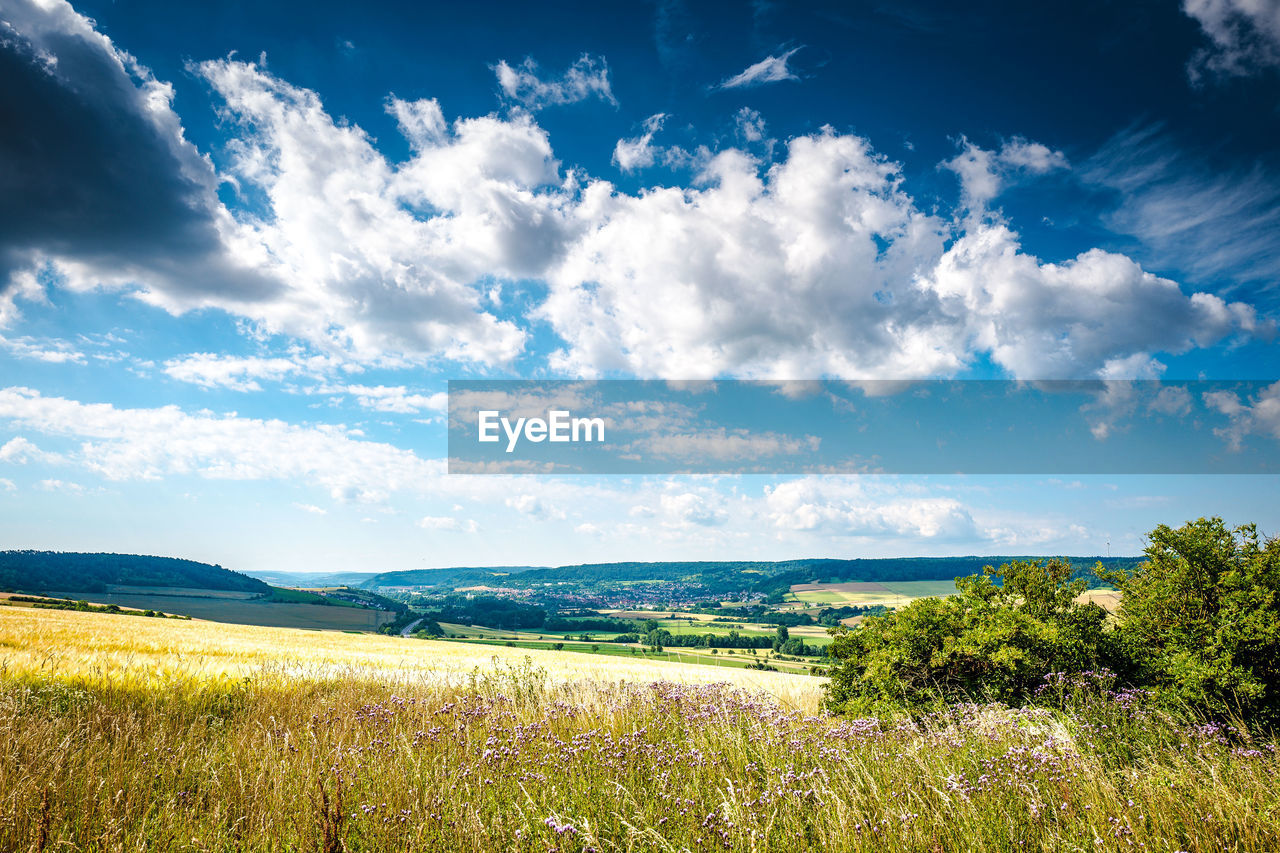 sky, cloud - sky, beauty in nature, scenics - nature, tranquil scene, plant, tranquility, landscape, environment, land, field, growth, day, nature, no people, tree, grass, non-urban scene, rural scene, idyllic, outdoors