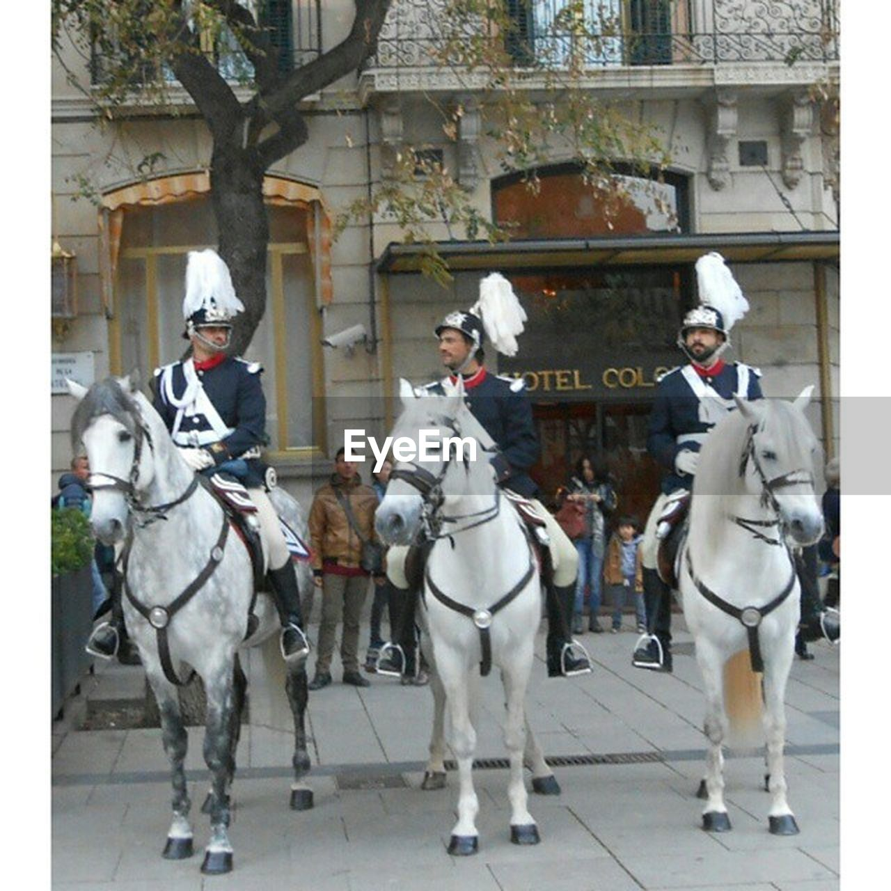 horse, domestic animals, horseback riding, men, day, real people, mammal, outdoors, large group of people, tree, only men, adult, people