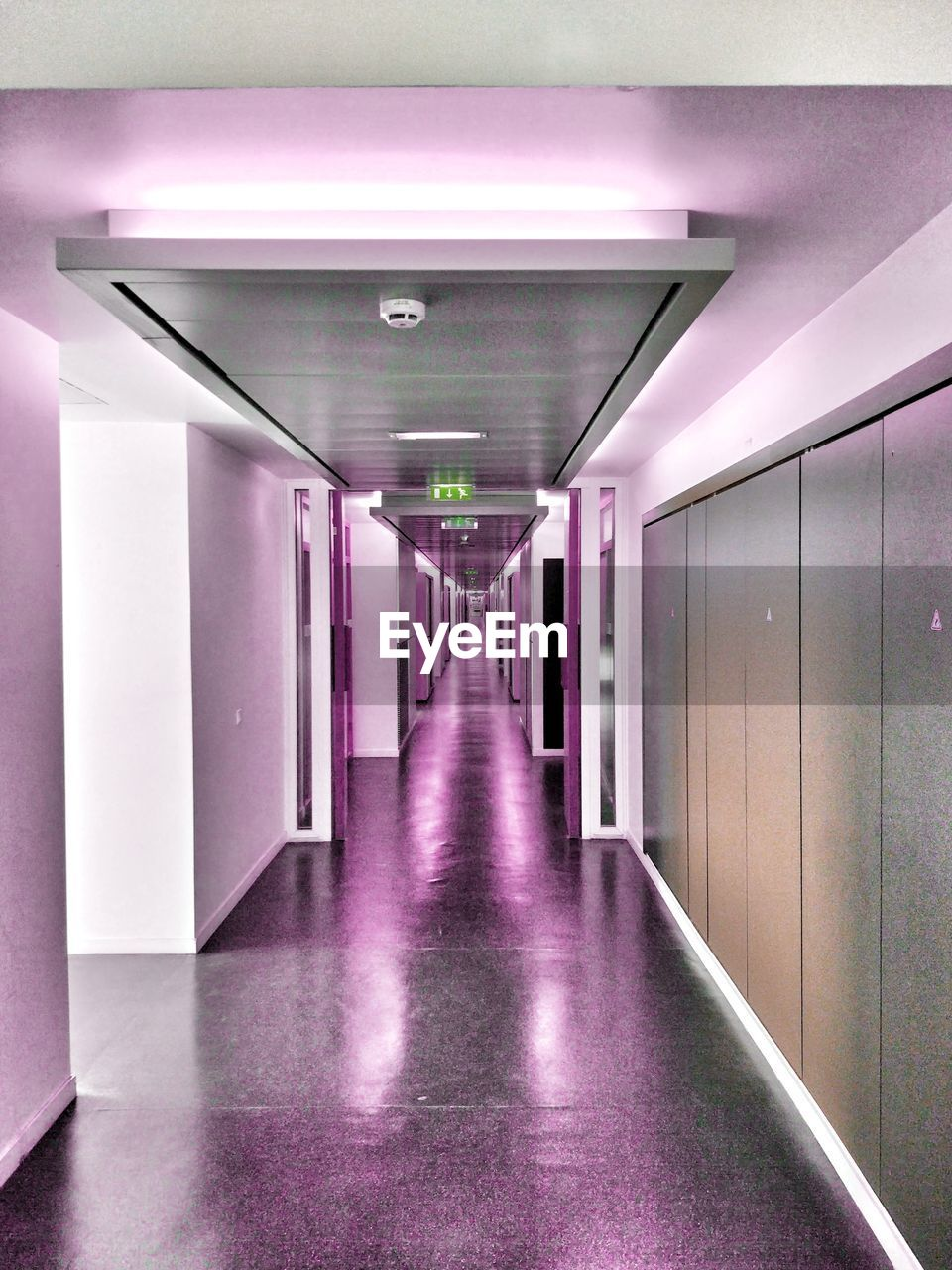 architecture, arcade, corridor, direction, the way forward, empty, indoors, building, illuminated, built structure, ceiling, diminishing perspective, no people, flooring, lighting equipment, absence, in a row, reflection, light, day, architectural column, purple, long