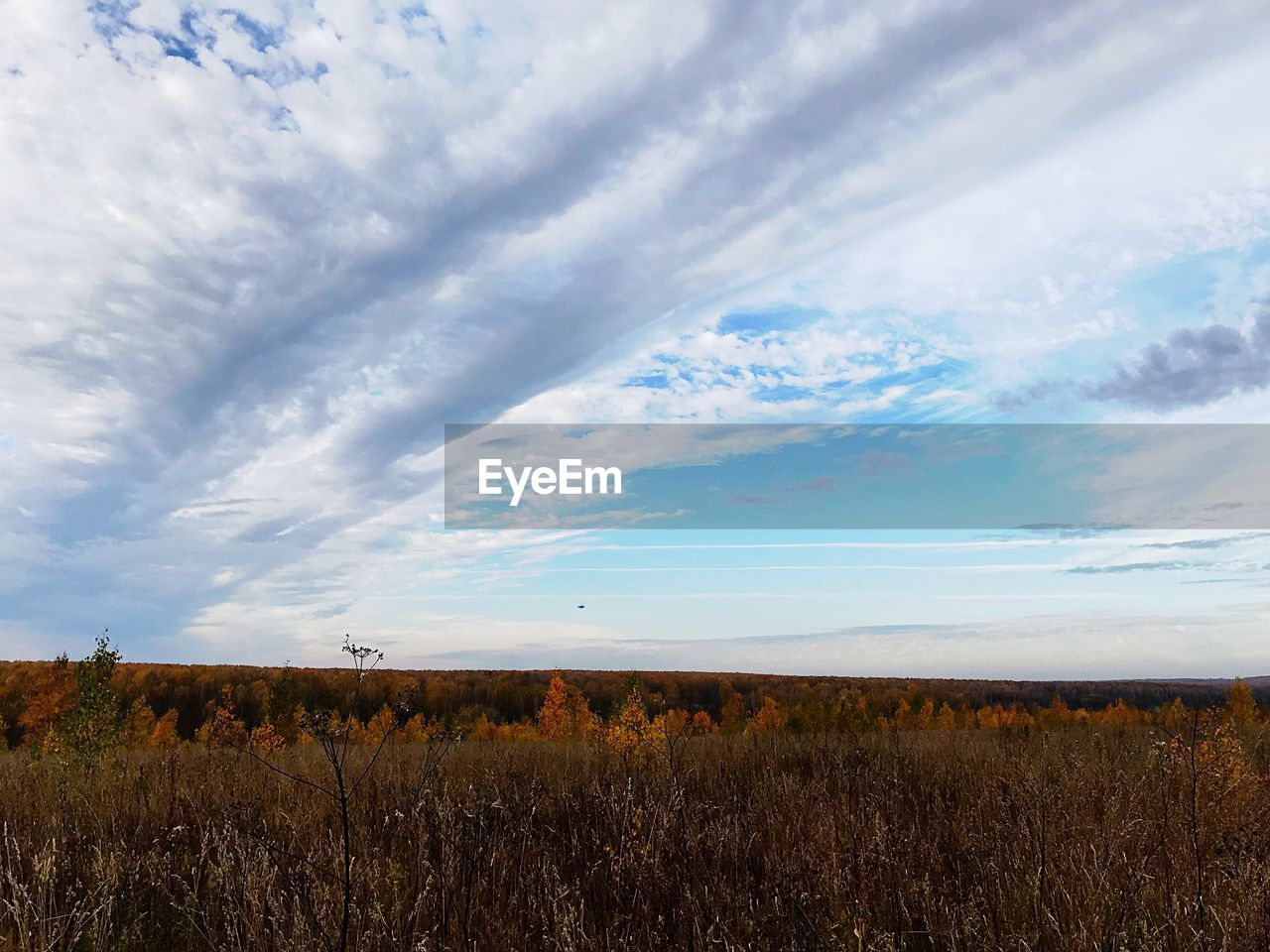 sky, cloud - sky, land, tranquil scene, field, plant, tranquility, landscape, scenics - nature, beauty in nature, environment, no people, nature, growth, non-urban scene, grass, day, idyllic, rural scene, horizon