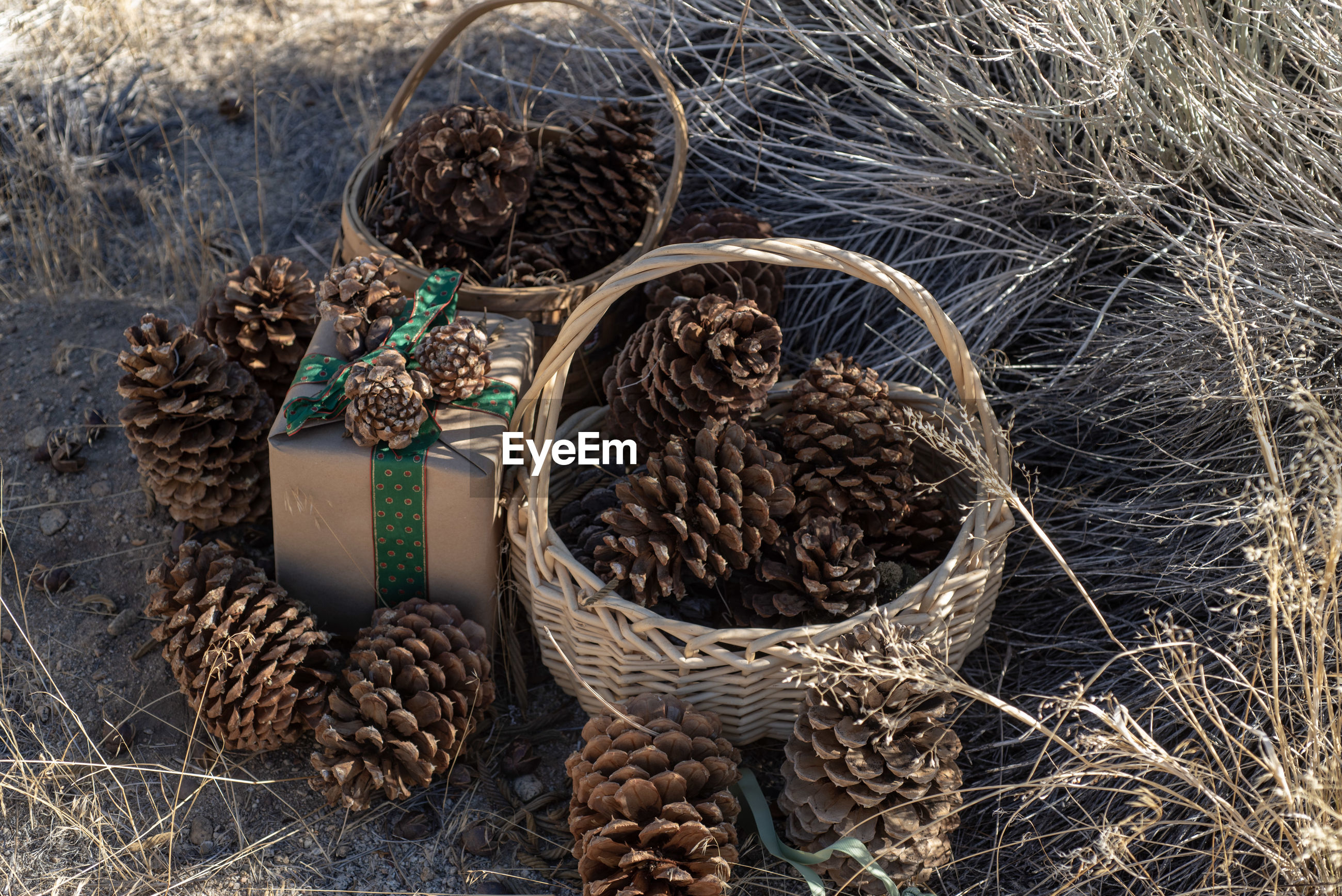 Rustic christmas gifts wrapped in brown paper with green vintage ribbon and pine cone decorations