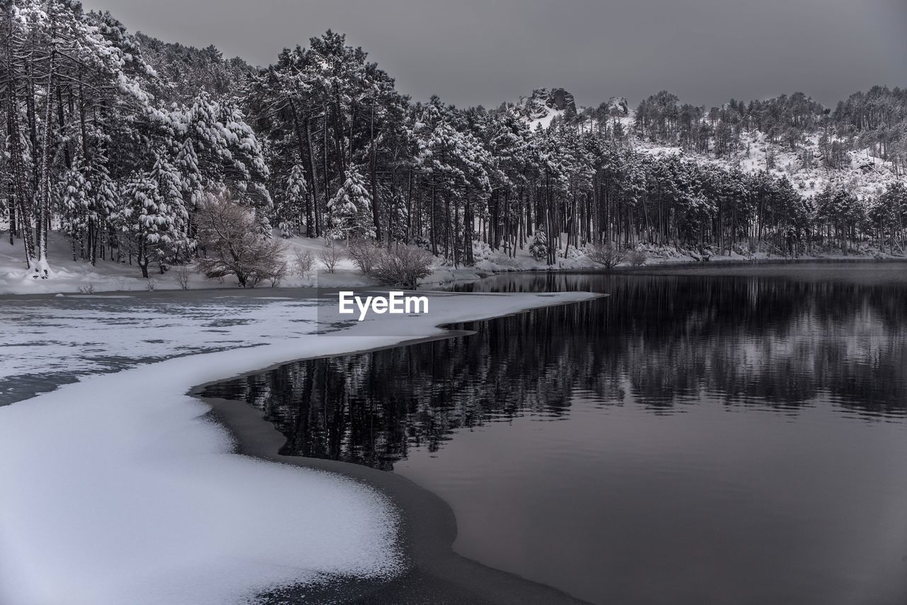 tree, nature, tranquility, water, cold temperature, tranquil scene, beauty in nature, snow, scenics, outdoors, winter, lake, day, no people, landscape, sky