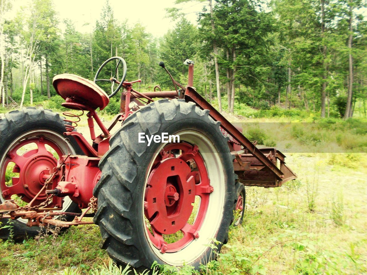 tree, transportation, field, day, land vehicle, green color, no people, agricultural machinery, outdoors, stationary, grass, tire, nature