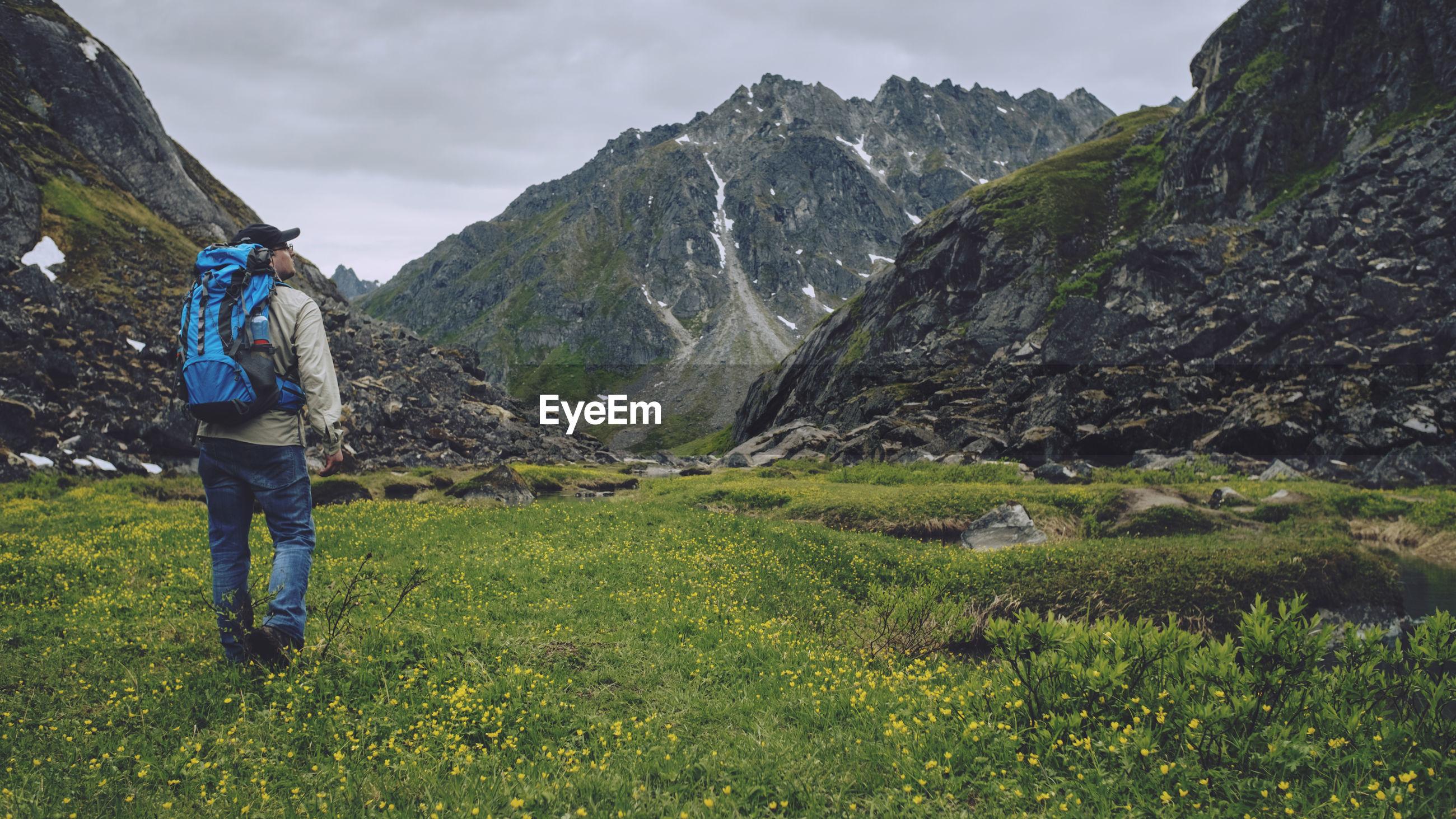 Rear view of male hiker walking on field against mountains