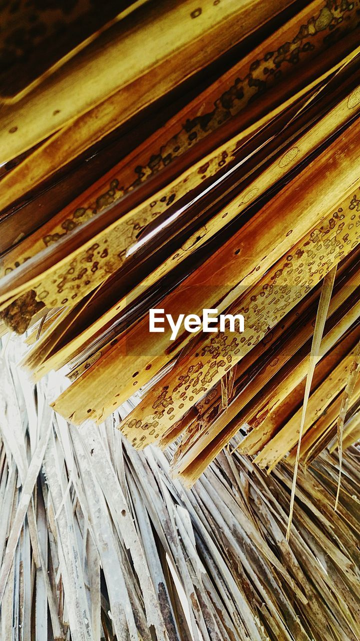 wood - material, textured, pattern, close-up, indoors, no people, day
