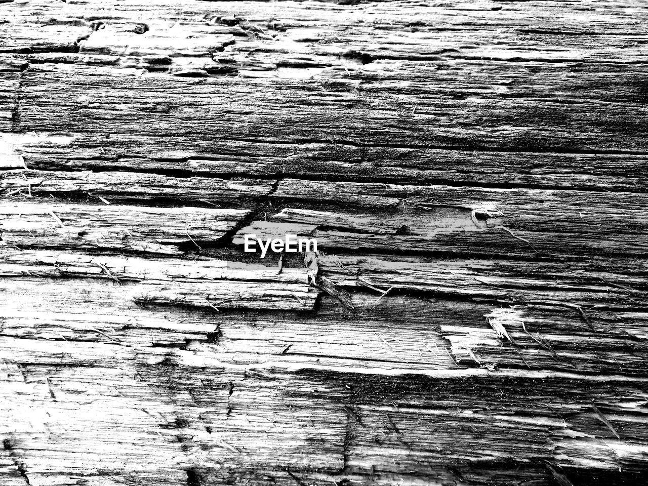 full frame, backgrounds, wood - material, textured, pattern, rough, abstract, no people, wood grain, close-up, timber, cracked, day, knotted wood, hardwood, nature, outdoors