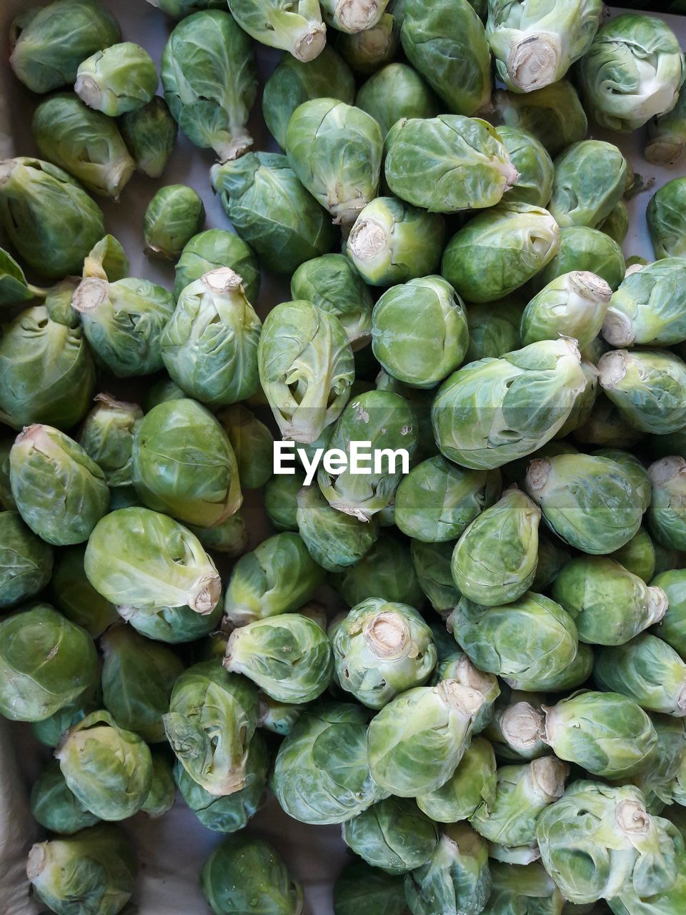 green color, wellbeing, healthy eating, full frame, freshness, vegetable, large group of objects, food and drink, backgrounds, food, abundance, no people, brussels sprout, raw food, day, for sale, close-up, retail, market, directly above