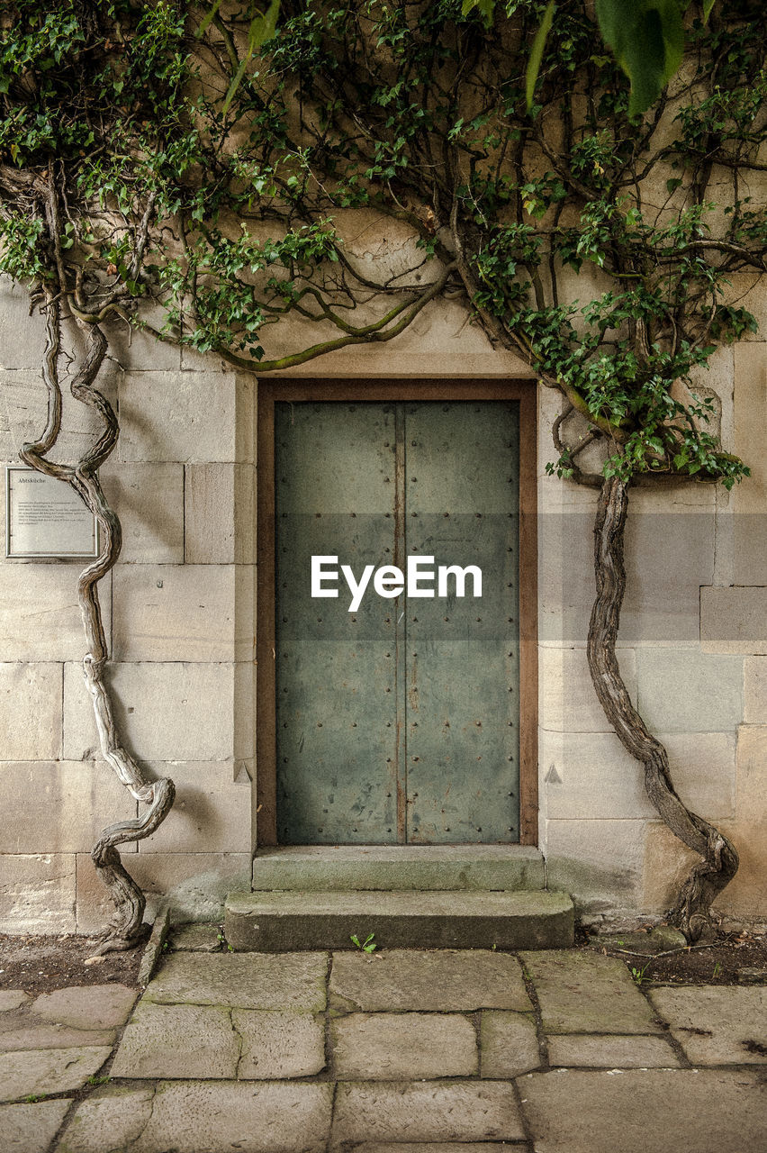 architecture, built structure, plant, no people, day, tree, wall - building feature, building exterior, entrance, door, building, closed, art and craft, outdoors, nature, house, old, branch, growth, absence