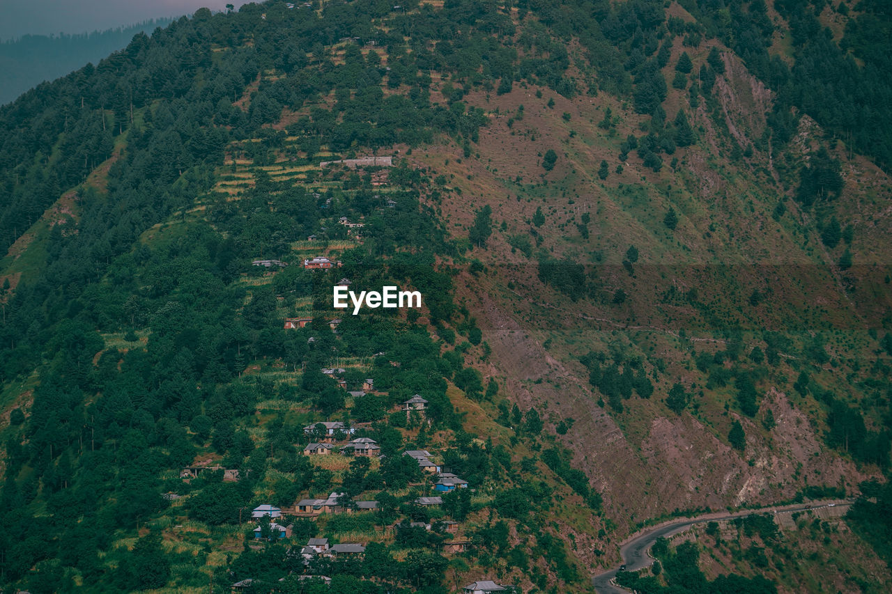 environment, landscape, scenics - nature, land, beauty in nature, nature, plant, aerial view, tree, growth, no people, tranquil scene, rural scene, mountain, tranquility, outdoors, field, high angle view, idyllic, forest