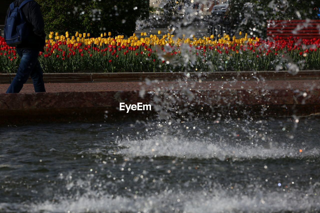 Water Splashing On Fountain Against Plants