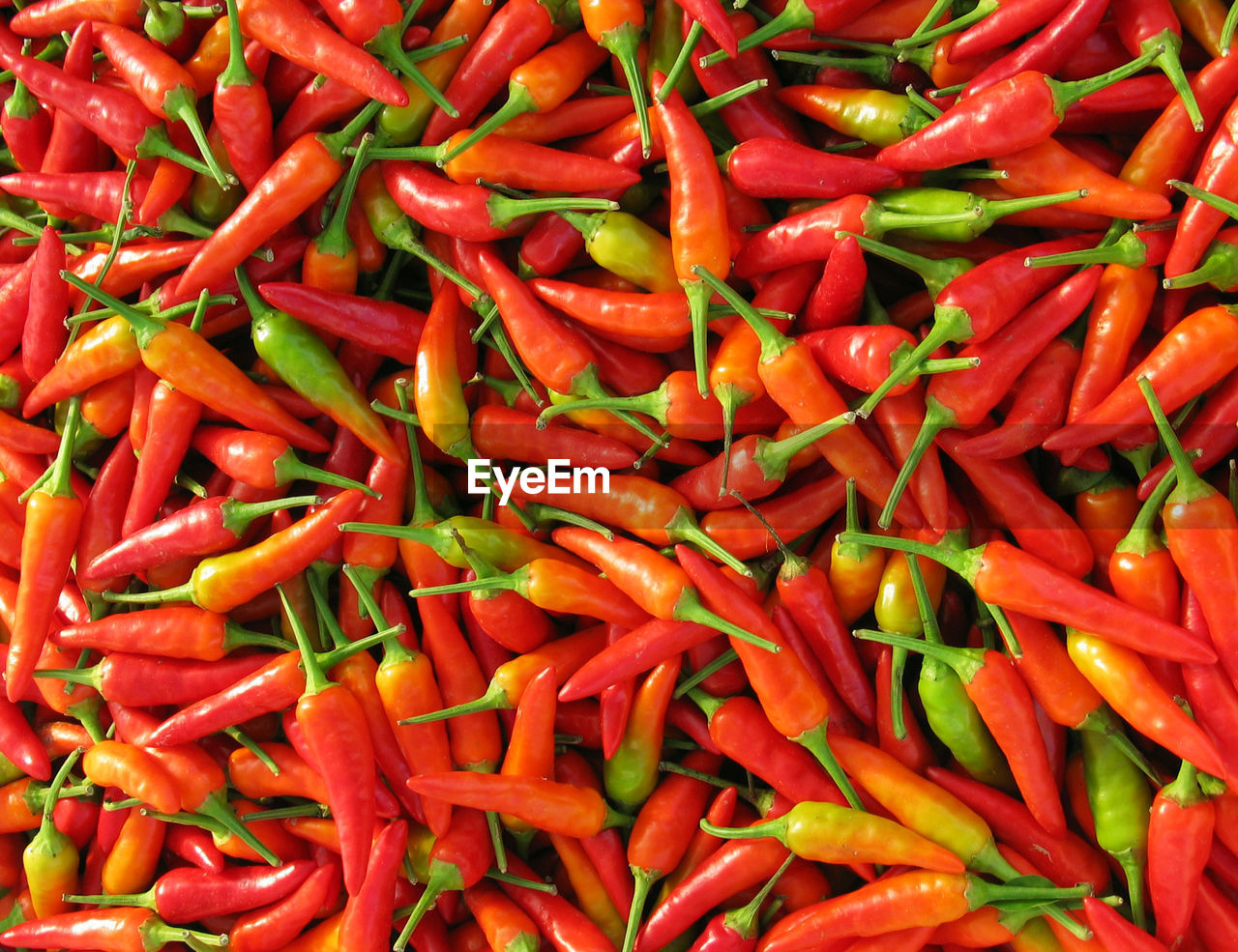 red, vegetable, food, spice, full frame, chili pepper, backgrounds, large group of objects, pepper, food and drink, red chili pepper, abundance, freshness, market, for sale, still life, no people, retail, high angle view, wellbeing, ripe