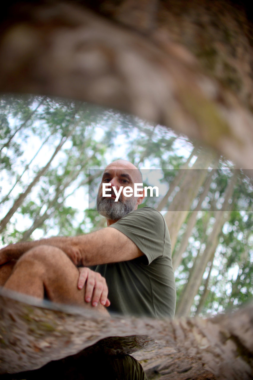 Low angle view of man climbing on tree