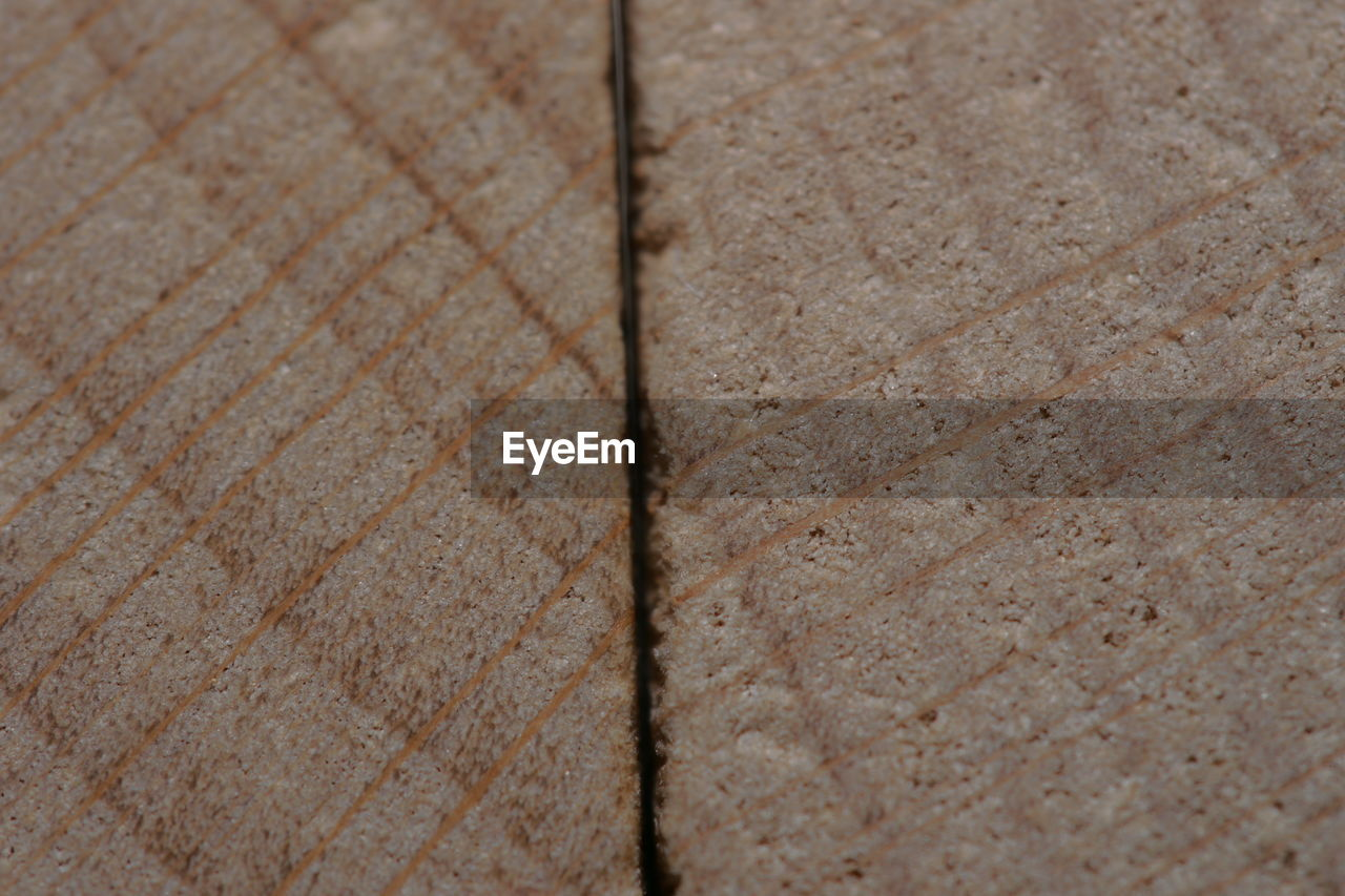 close-up, full frame, no people, backgrounds, textured, nature, selective focus, outdoors, flooring, pattern, day, high angle view, plant, old, land, single object, extreme close-up, leaf, architecture, shape, paving stone