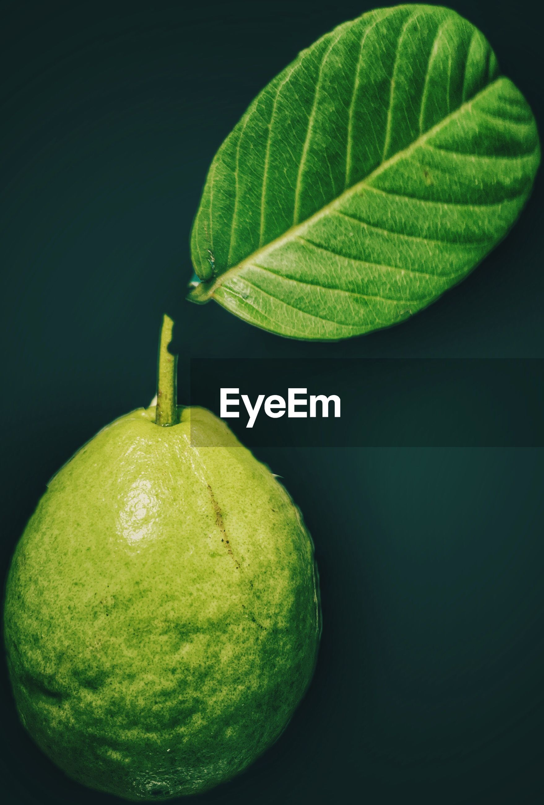 High angle view of guava with leaf on table
