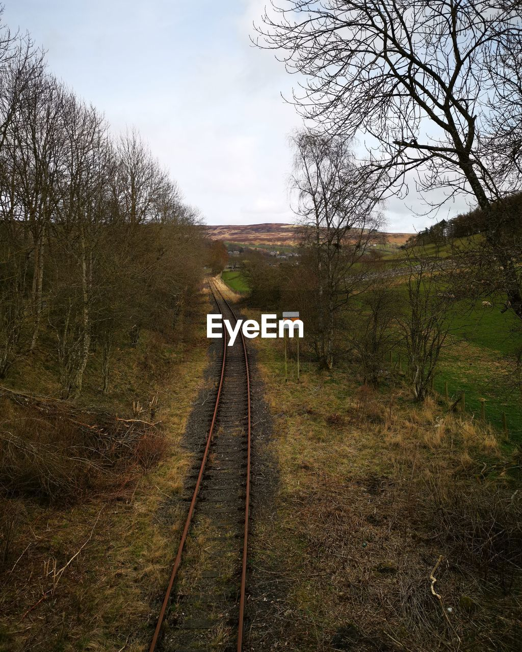 track, tree, plant, railroad track, rail transportation, direction, sky, the way forward, transportation, land, no people, nature, bare tree, landscape, tranquility, environment, day, tranquil scene, field, grass, diminishing perspective, outdoors, long