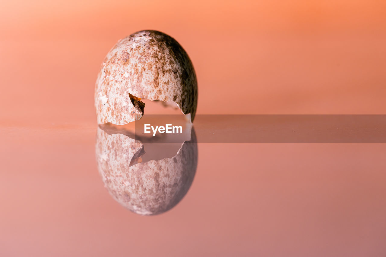 close-up, no people, colored background, orange color, studio shot, indoors, still life, sphere, copy space, nature, focus on foreground, shape, single object, food, sunset, geometric shape, food and drink, circle, solid