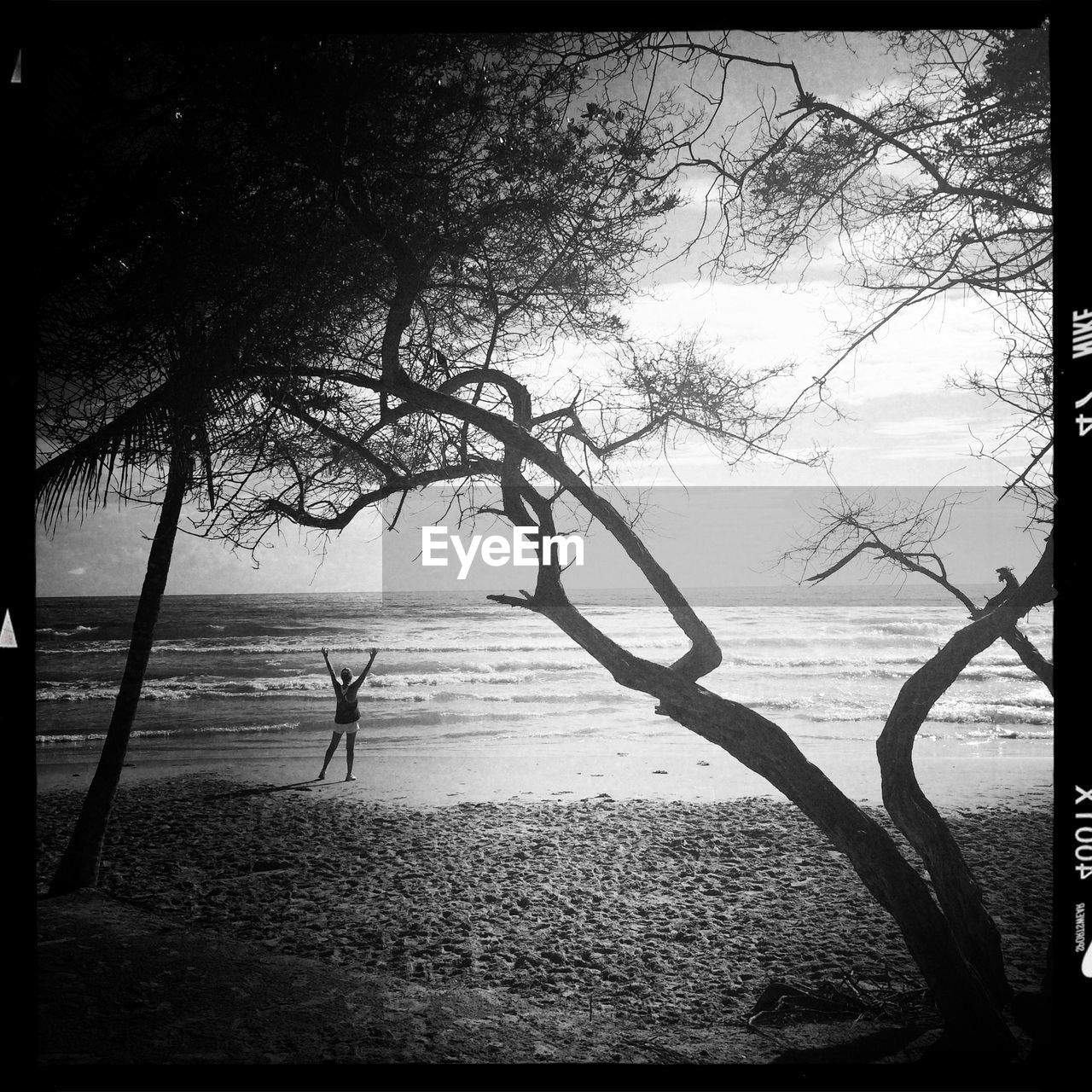 tree, water, sea, nature, tranquil scene, tranquility, one person, scenics, silhouette, beauty in nature, outdoors, standing, tree trunk, real people, beach, day, branch, horizon over water, rope swing, lone, full length, sky, one man only, people