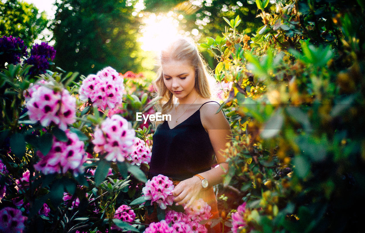Young woman standing by pink flowering plants at park