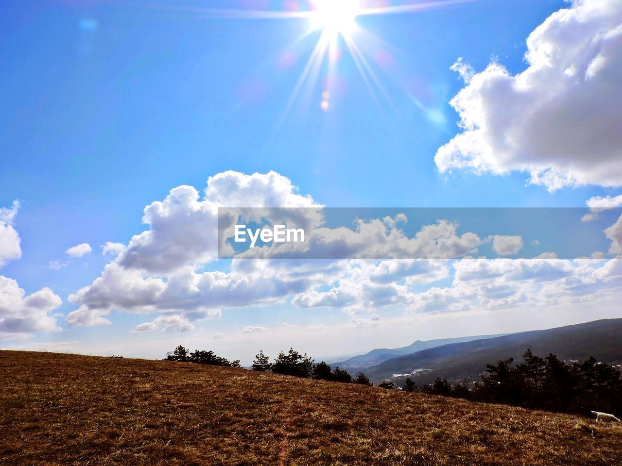 sky, cloud - sky, beauty in nature, tranquility, sunlight, tranquil scene, scenics - nature, landscape, environment, nature, day, sun, sunbeam, land, lens flare, no people, sunny, non-urban scene, field, plant, outdoors, bright, brightly lit, solar flare