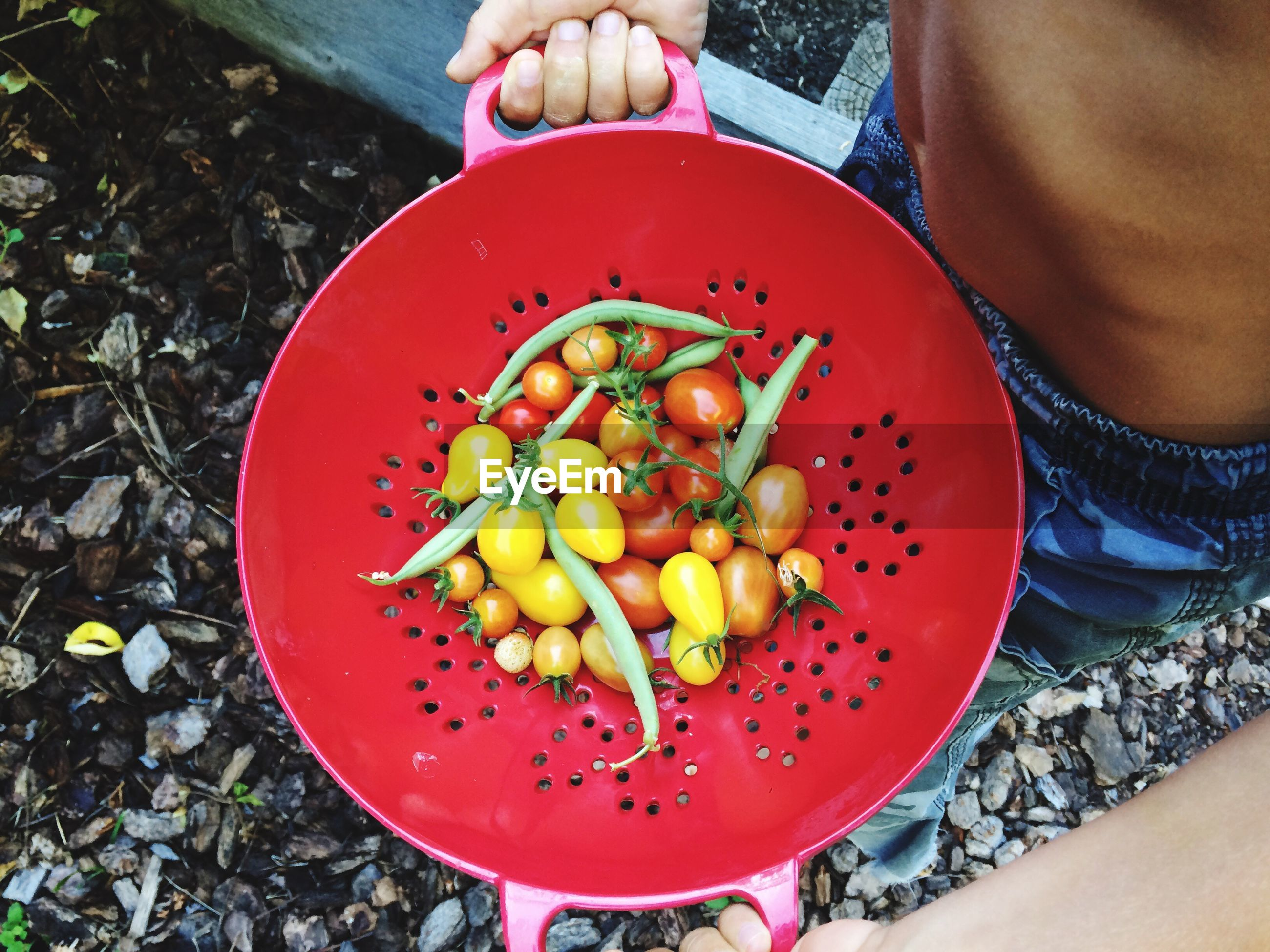 Midsection of shirtless man holding colander with vegetables