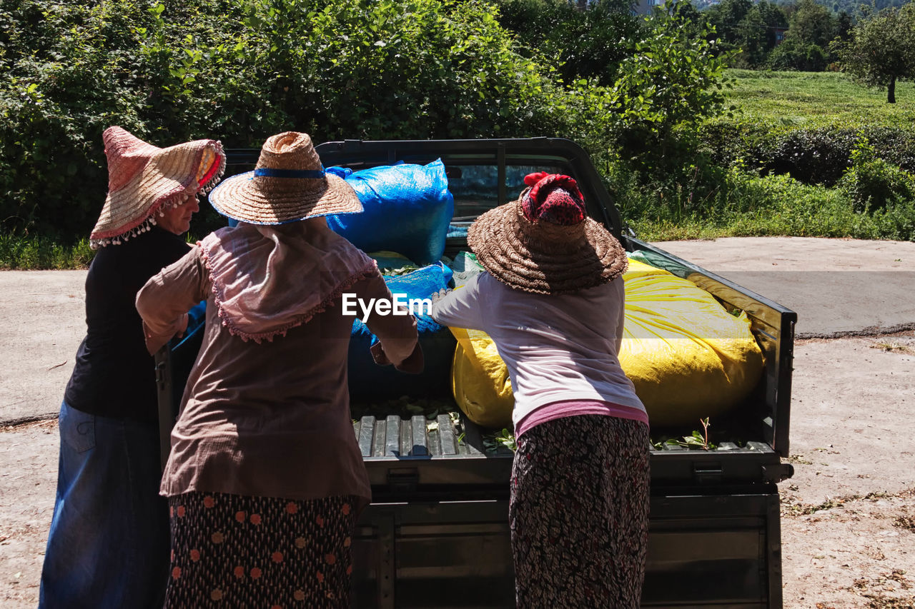 Women loading tea leaves in sacks on pick-up truck