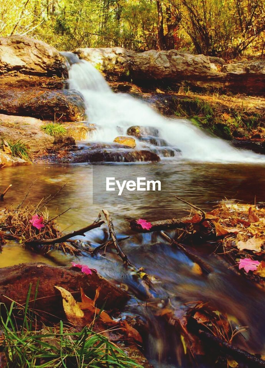 nature, water, long exposure, waterfall, motion, beauty in nature, outdoors, blurred motion, day, scenics, tranquility, no people, river, autumn, tree, forest, landscape, hot spring