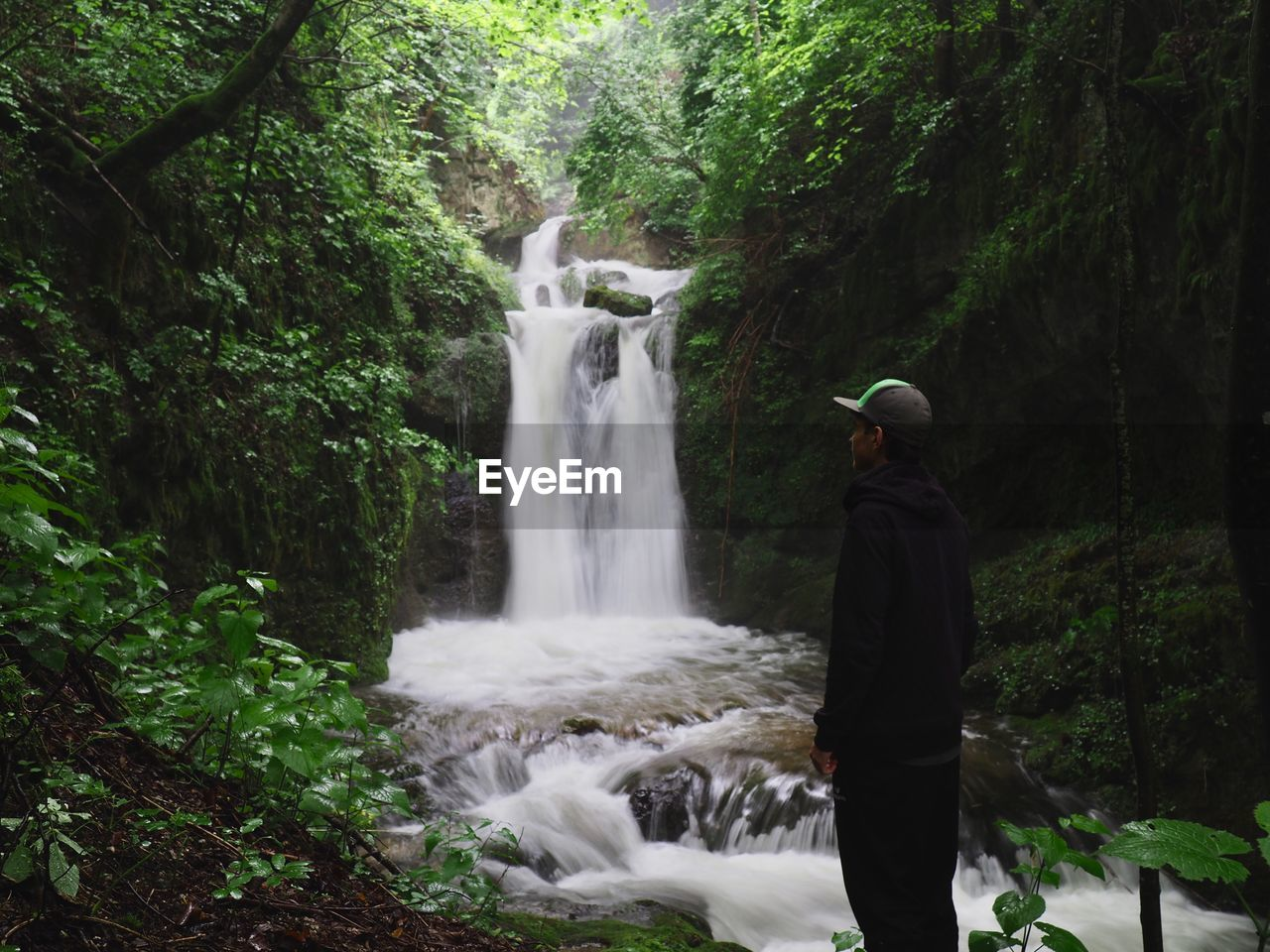 Man looking at waterfall while standing in forest