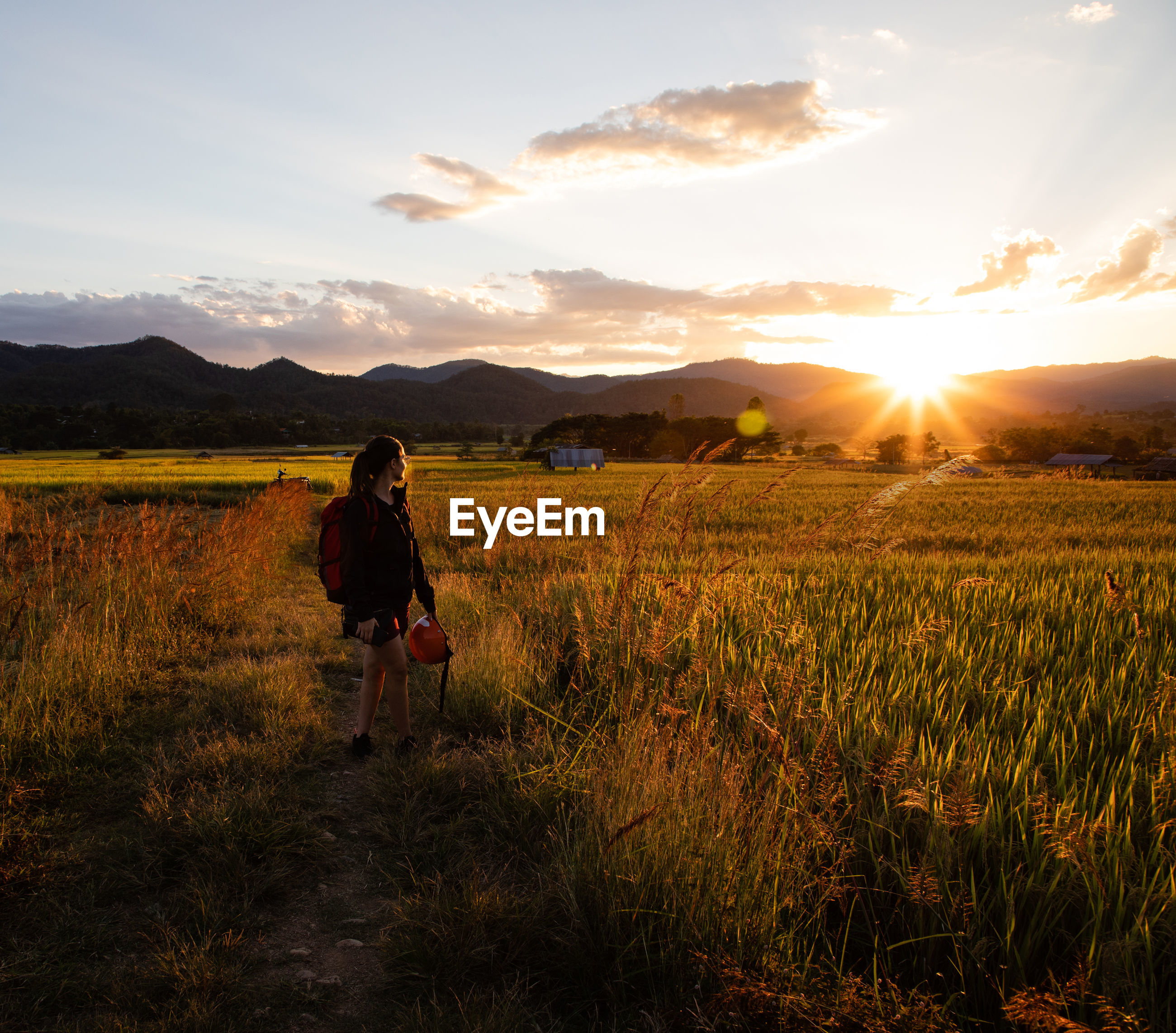 Woman standing at rice paddy against sky during sunset
