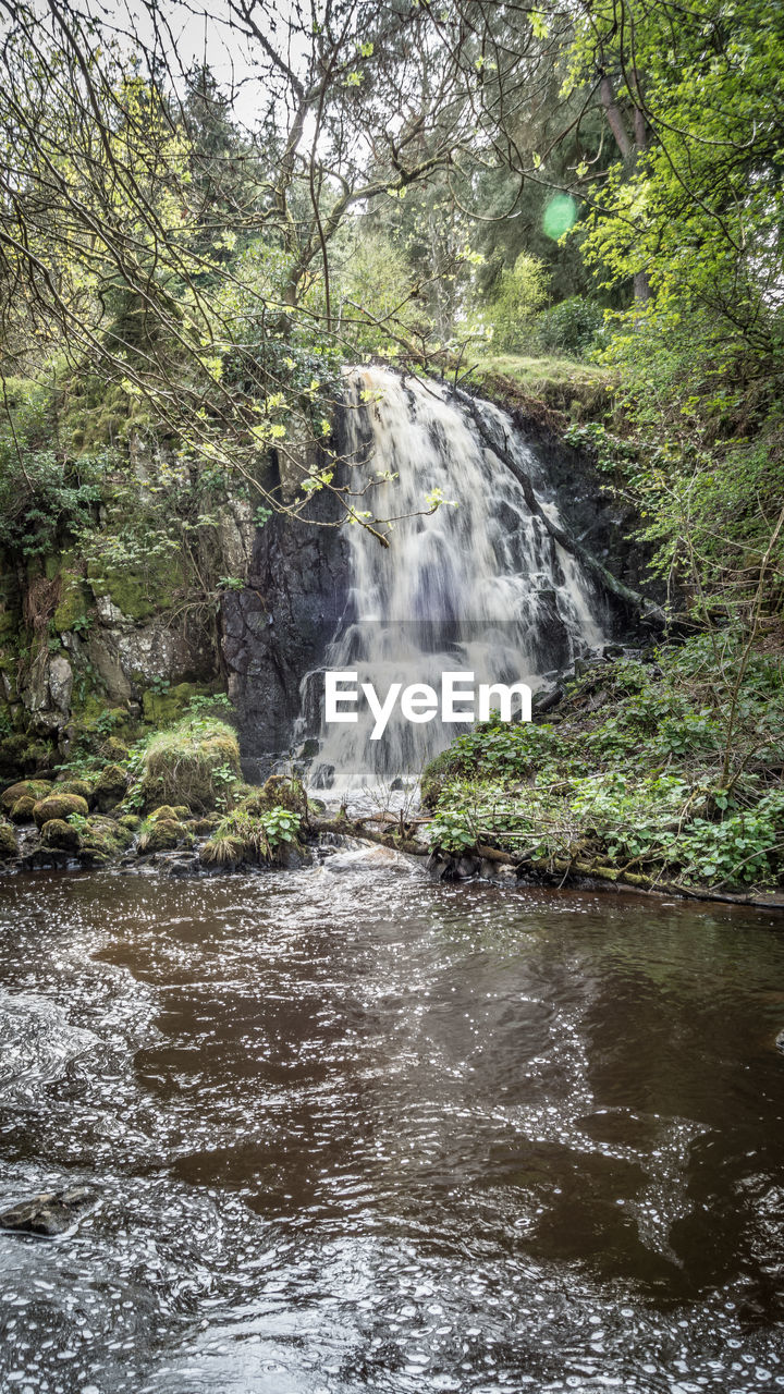 water, tree, forest, plant, motion, beauty in nature, waterfall, land, flowing water, scenics - nature, nature, growth, rock, rock - object, solid, day, environment, no people, blurred motion, flowing, outdoors, power in nature, rainforest, stream - flowing water