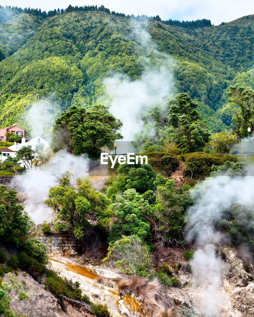 smoke - physical structure, tree, plant, mountain, nature, environment, day, beauty in nature, scenics - nature, land, steam, non-urban scene, geology, heat - temperature, forest, smoke, green color, mode of transportation, transportation, outdoors, no people, hot spring, power in nature, pollution, air pollution