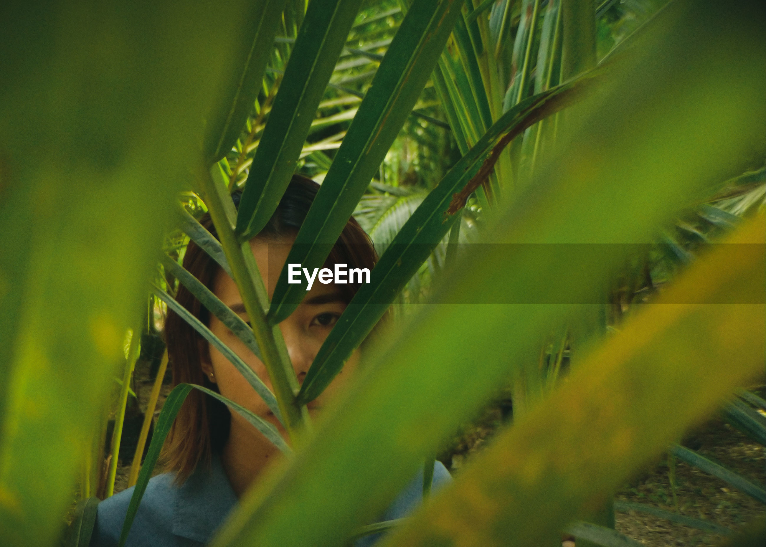 Close-up portrait of woman seen through palm leaves