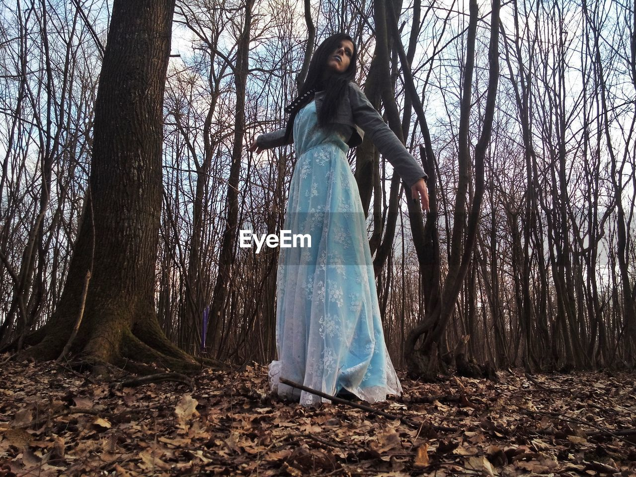 Low angle view of young woman standing in forest