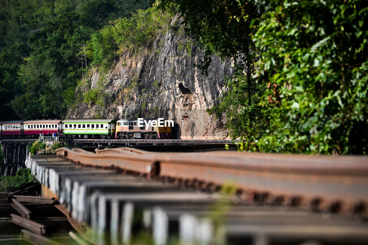 tree, plant, architecture, nature, day, rail transportation, no people, selective focus, built structure, public transportation, train, transportation, outdoors, train - vehicle, track, mode of transportation, water, focus on background, rock, railroad track