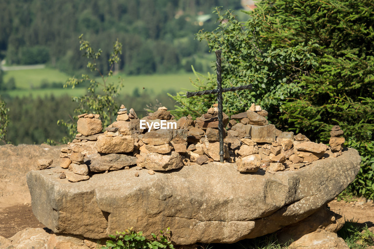 solid, rock, plant, nature, tree, day, no people, rock - object, focus on foreground, water, tranquility, outdoors, beauty in nature, growth, stone - object, sunlight, tranquil scene, green color, scenics - nature