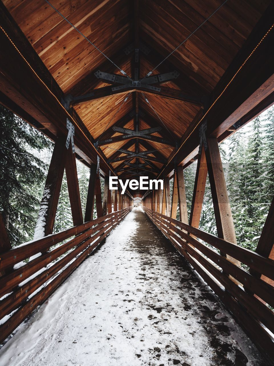 Snow Covered Wooden Footbridge Amidst Trees In Forest