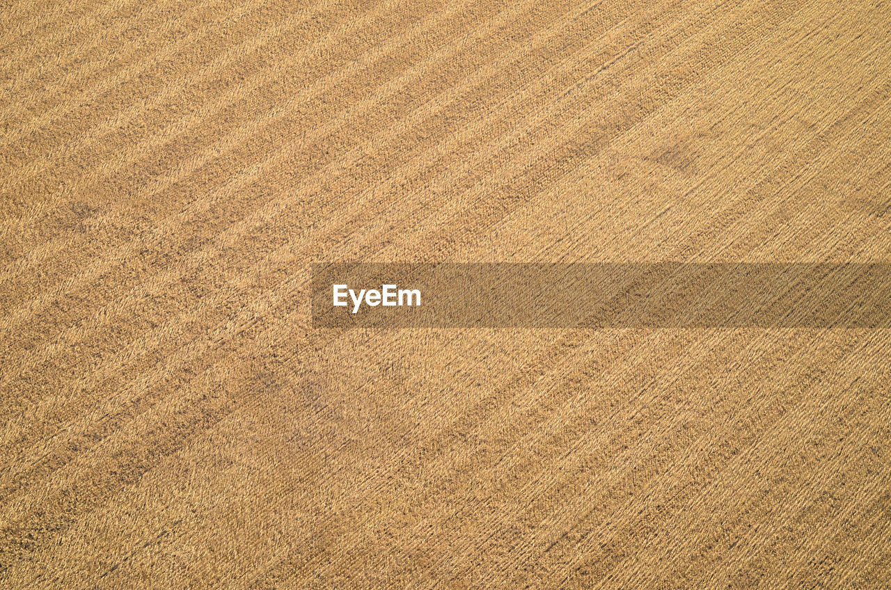backgrounds, full frame, pattern, textured, brown, no people, material, copy space, beige, close-up, wood, land, nature, textile, flooring, high angle view, indoors, wood grain, wood - material, cereal plant, textured effect, blank